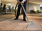 Carpet Cleaning Business In Michigan For Sale